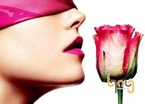 Sử dụng mùi hương để làm lay động khướu giác