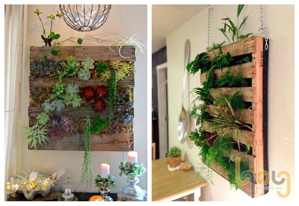 Pallet gỗ làm giá kệ trồng cây xanh trong nhà bếp