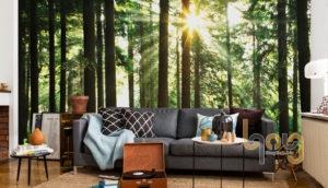 Giấy dán tường trang trí phòng khách