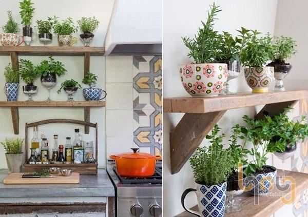 Chậu cây xanh tạo ấn tượng trên giá treo tường