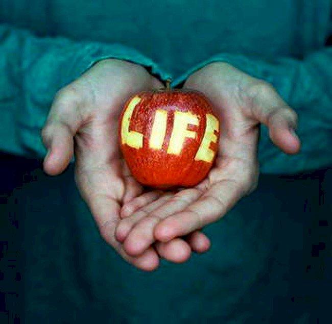 5 kỹ năng sống bạn cần biết mà bạn chưa được dạy